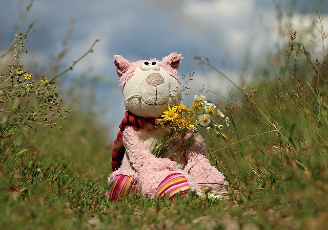 A teddy bear sitting on top of a grass covered field